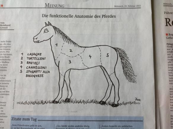 pferd_wienerzeitung